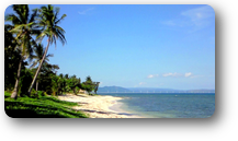 Welcome to Natsuca Beach Resort in Pagudpud
